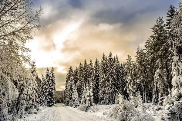 Śnieżna kołderka