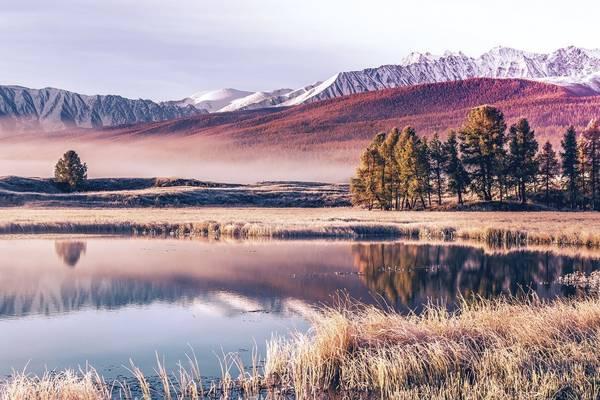 Tafla jeziora
